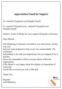 Appreciation Email for Support