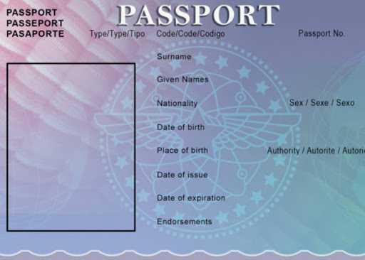 passport photo templates
